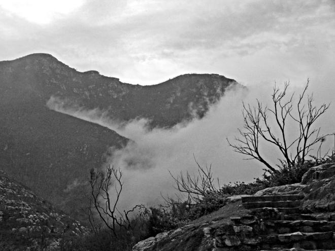 cloud-in-the-outeniqua b&w