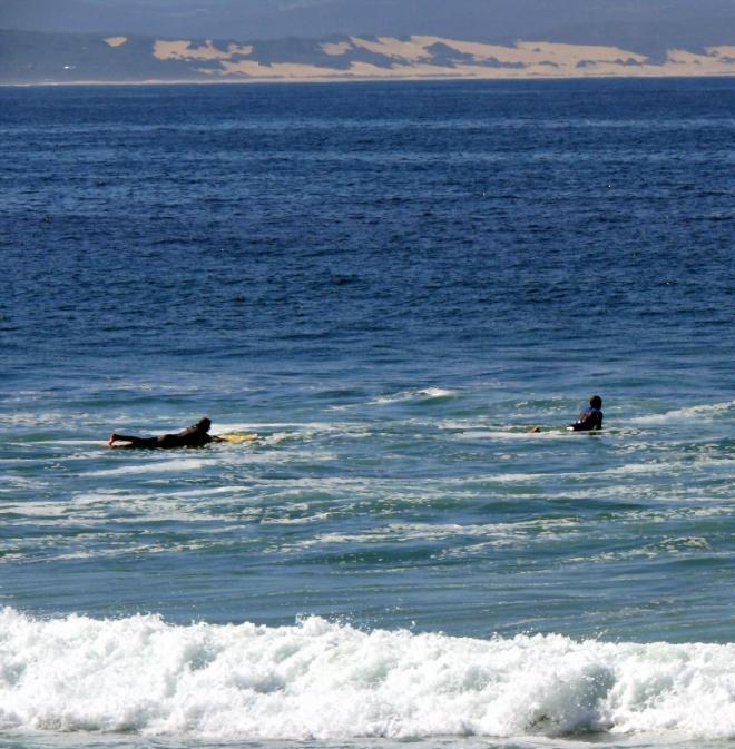 Surfing in 'J Bay'