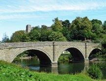 dinham-bridge
