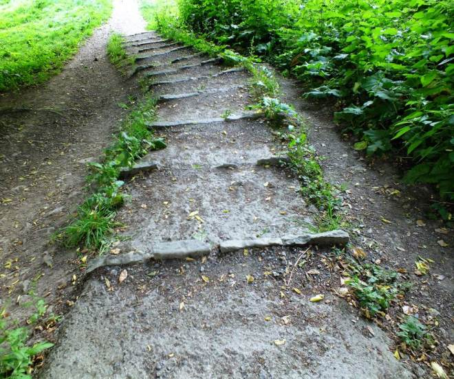 woodland walk - packhorse steps