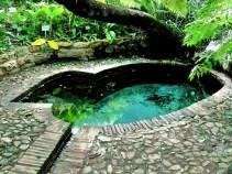 Colonel Bird's Bath