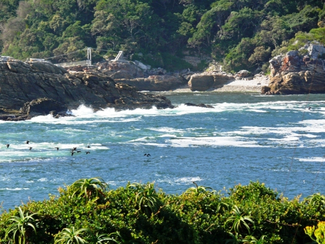 storms river dryfhoutbaai