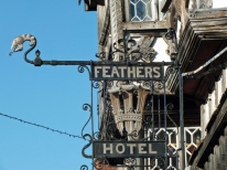 feathers sign