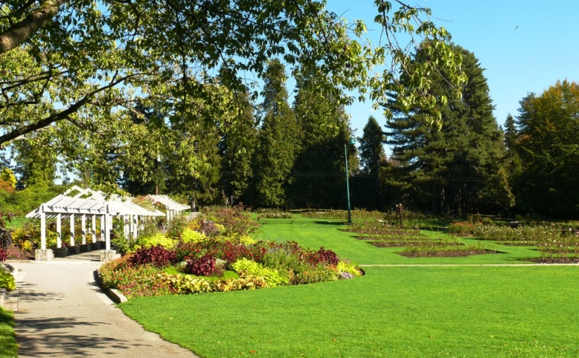 Vancouver Revisited: Stanley Park