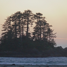 chesterman beach sunset