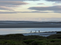 The Taf Estuary