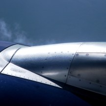 Sunlight on Wing