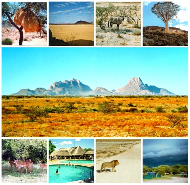 Main: Spitskoppe Top: Social Weaver's Nest, Namib Desert, Oryx, Kokerboom Bottom: Springbok, Etosha Pool, Lion, Etosha Storm