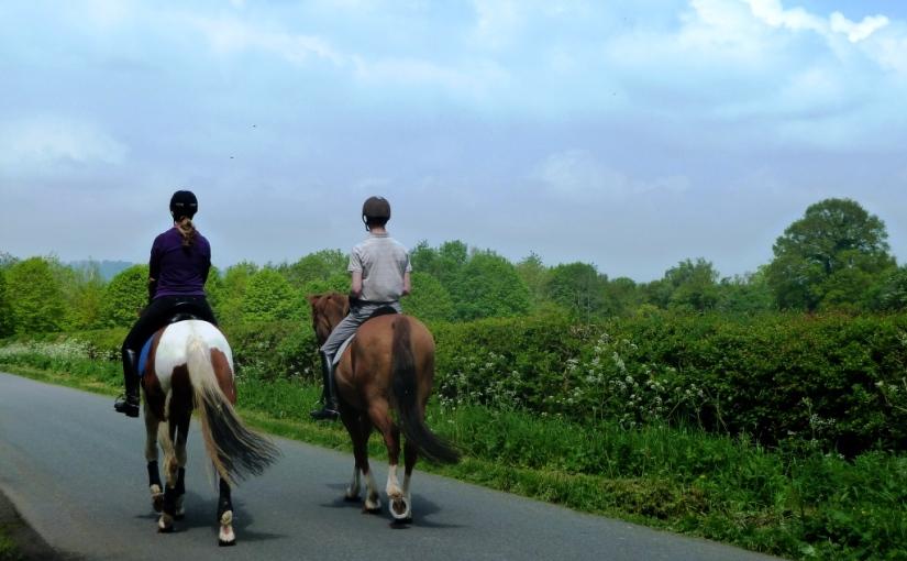 Cee's Which Way Challenge:Bridleway
