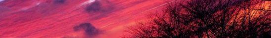 sunrise 2