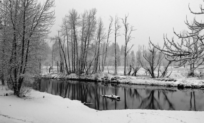 River Merced in the Snow