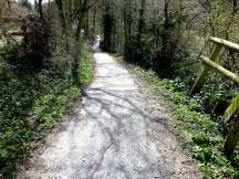 This way leads down to the river and Dinham Bridge