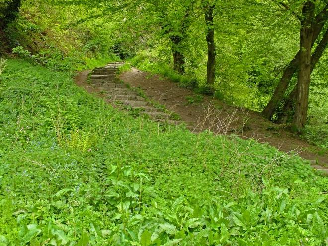 Packhorse Path