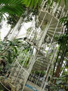 V - Victorian Palm House (1)