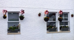 Unusual flower baskets
