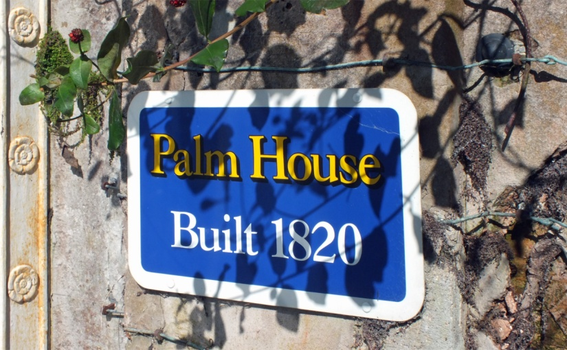 A Regency Palm House