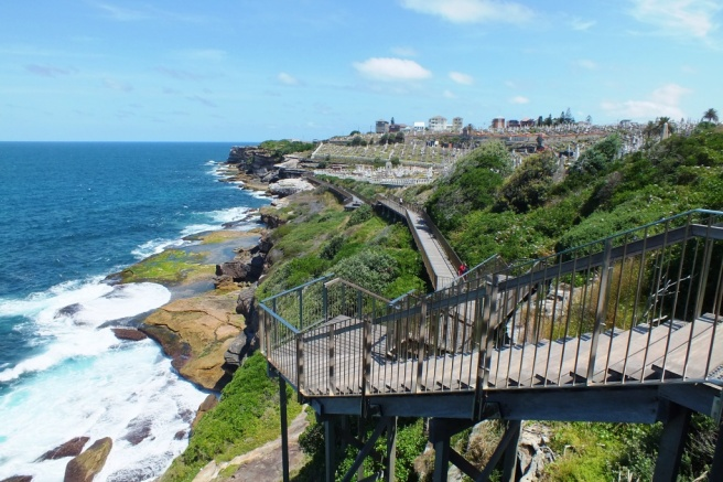 Looking back to Clovelly and Waverley Cemetery