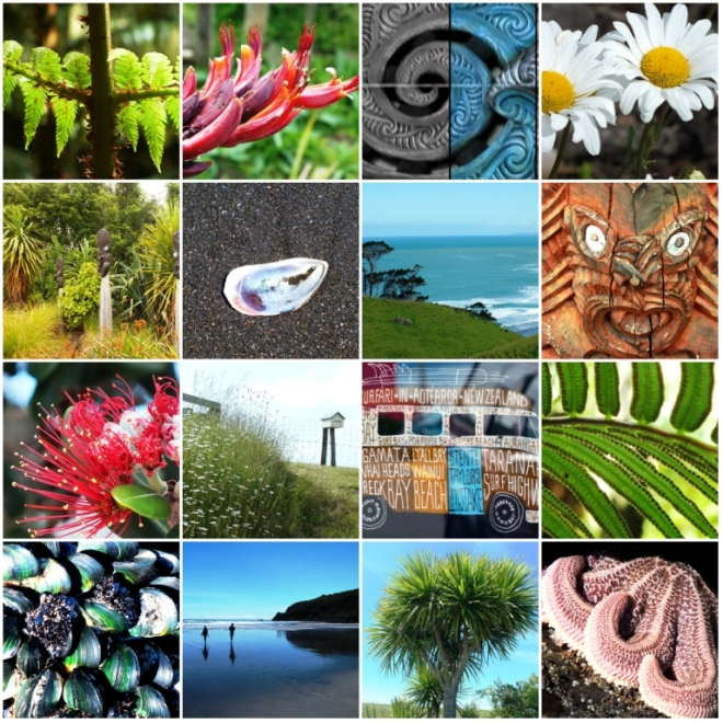 christmas collage NZ a