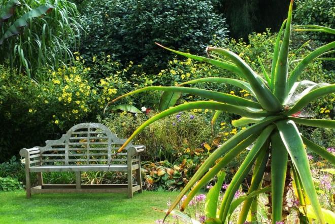 abbotsbury garden