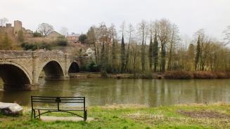 Dinham Bridge (March)