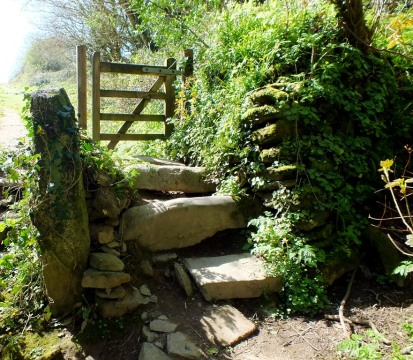 Steps and a gate