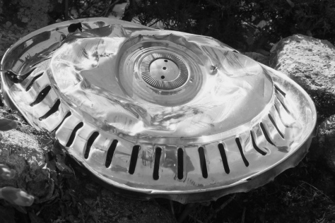 Hub cap in the hedgerow