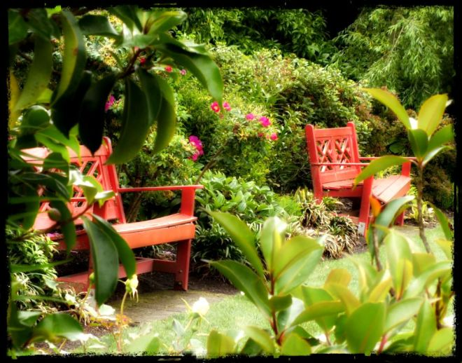 Chinoiserie benches in Hamilton Gardens, New Zealand