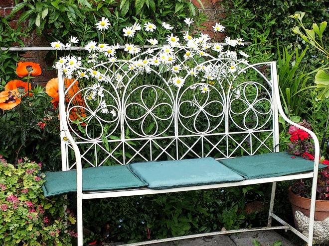Daisy bench