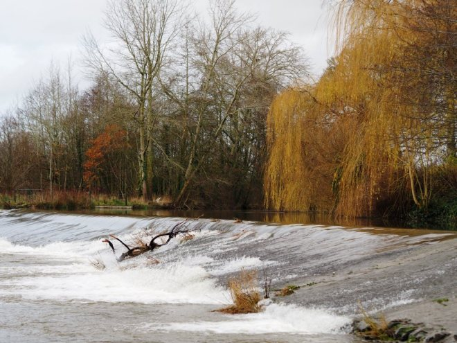 Dinham Weir