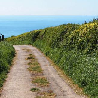 Steep lane
