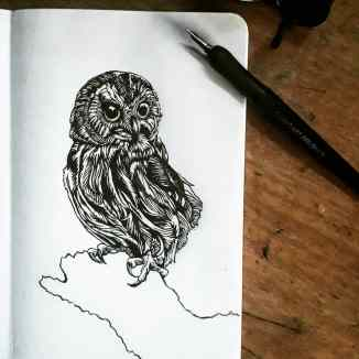 Fountain pen Owl 1
